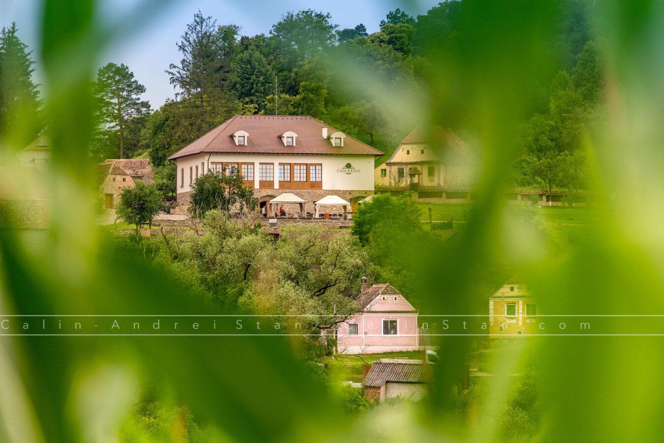 Casa Kraus din Crit