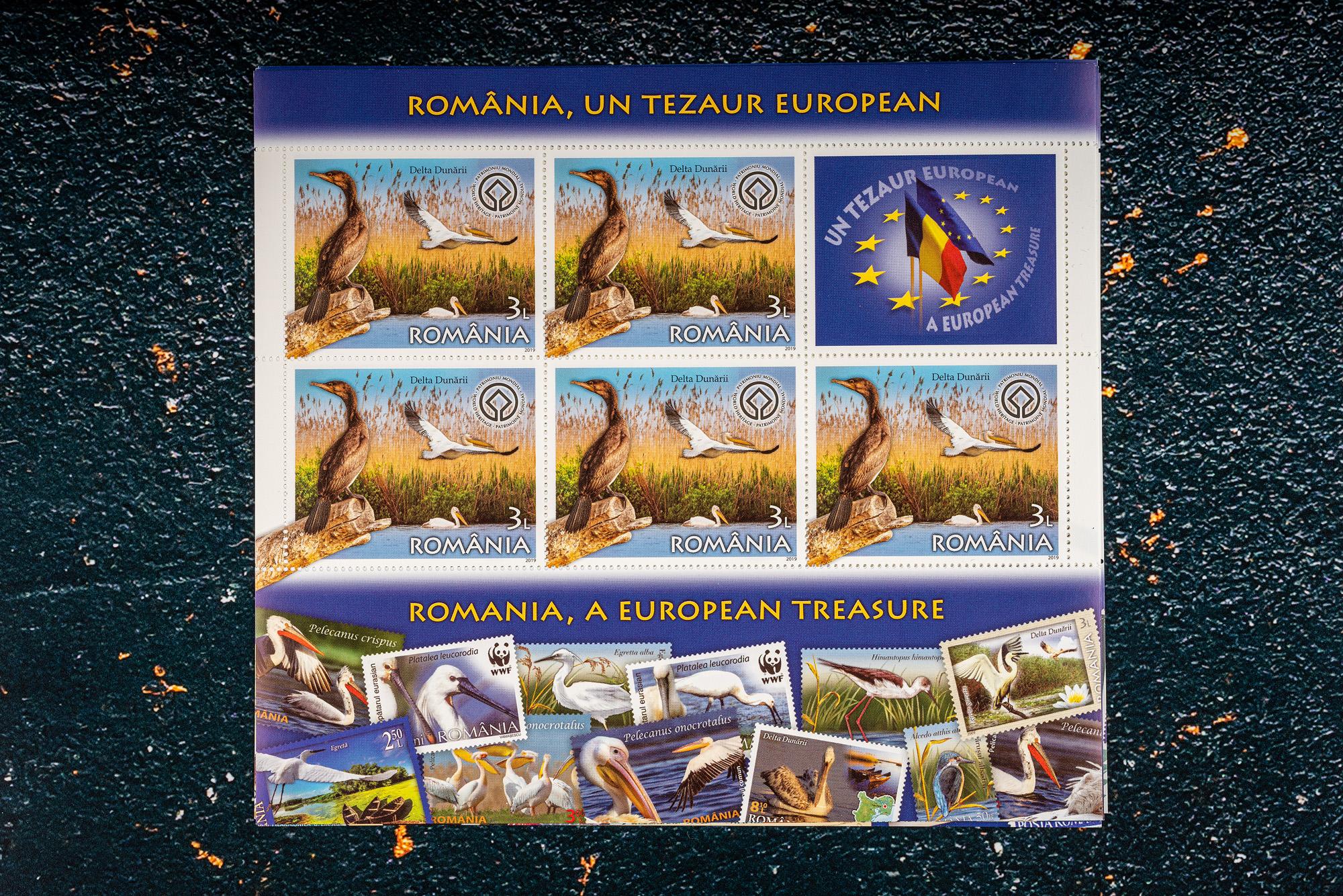 Un pic mai de aproape: timbrul cu imaginea Cormoranului din Delta Dunării realizată de mine
